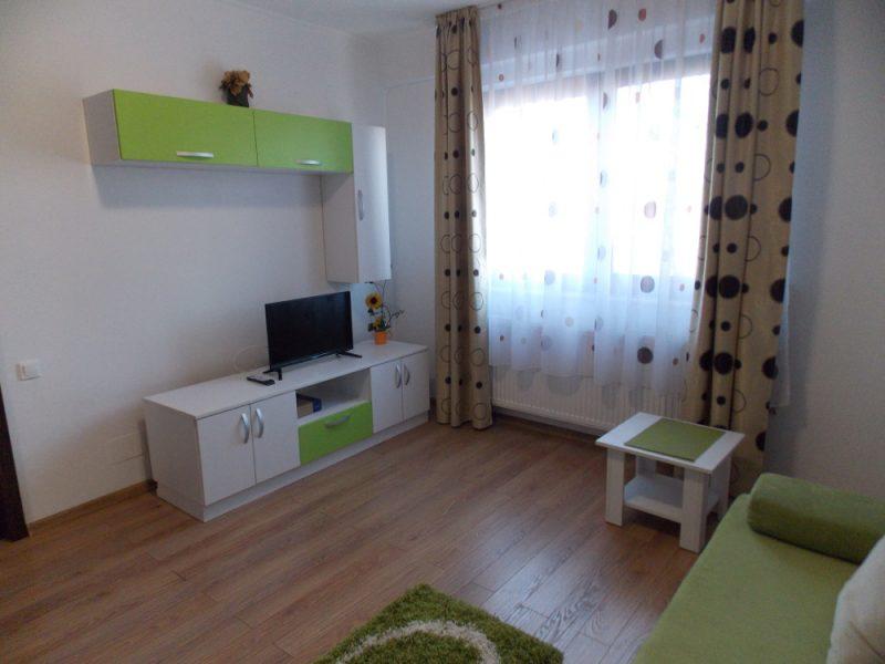 apartament-nou-1-camera-de-inchiriat-Oradea-AP98