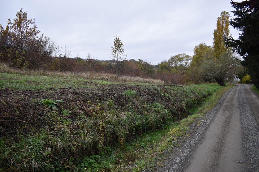 teren-intravilan-de-vanzare-Oradea-T30